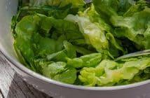 Comment enlever une salade du jardin
