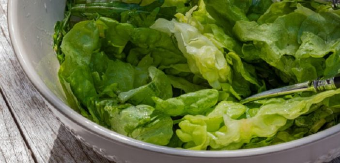 Comment enlever une salade du jardin ?
